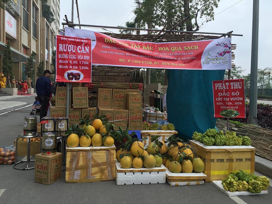 hội-chợ-xuân-The-Pride-Hải-Phát (2)