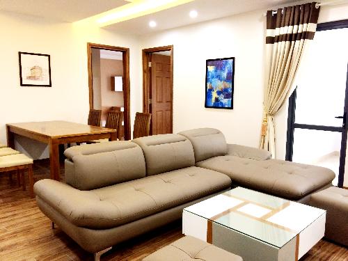 Khai-trương-nhà-mẫu-dream-center-home