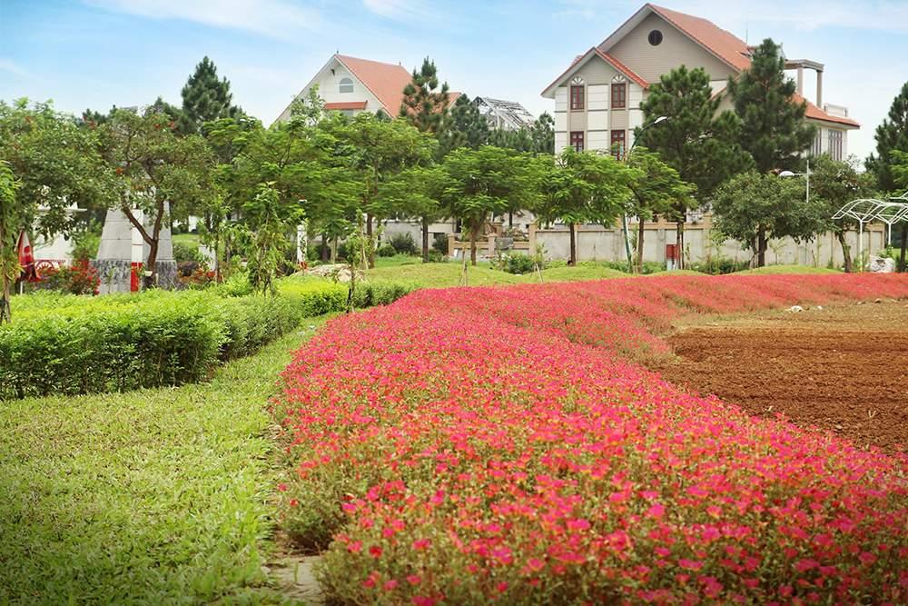 canh-quan-khu-do-thi-sinh-thai-the-phoenix-garden (5)