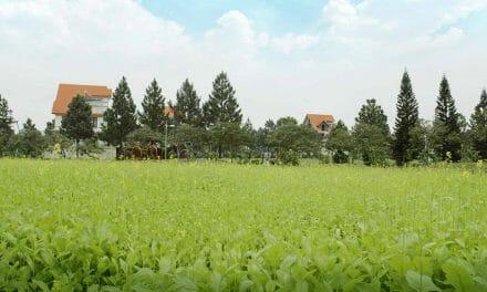 The Phoenix Garden | khu đô thị đáng sống nhất phía Tây Hà Nội