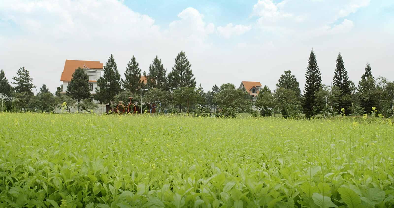 tien-ich-the-phoenix-garden (1)