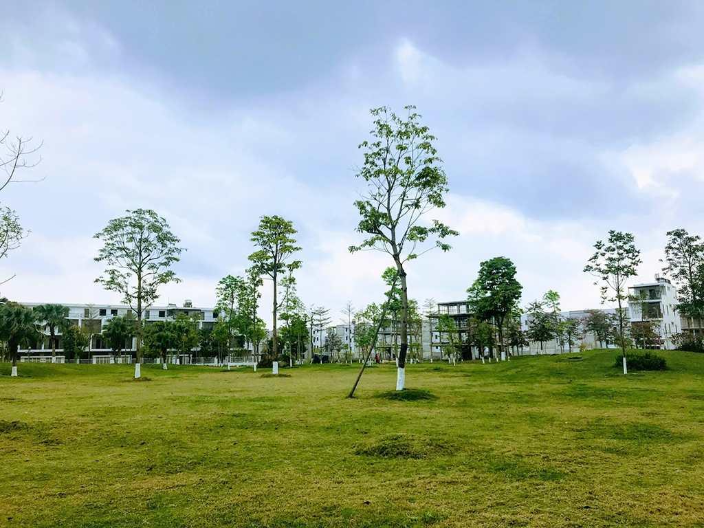 tien-do-thi-cong-nam-32-t2-2019 (4)
