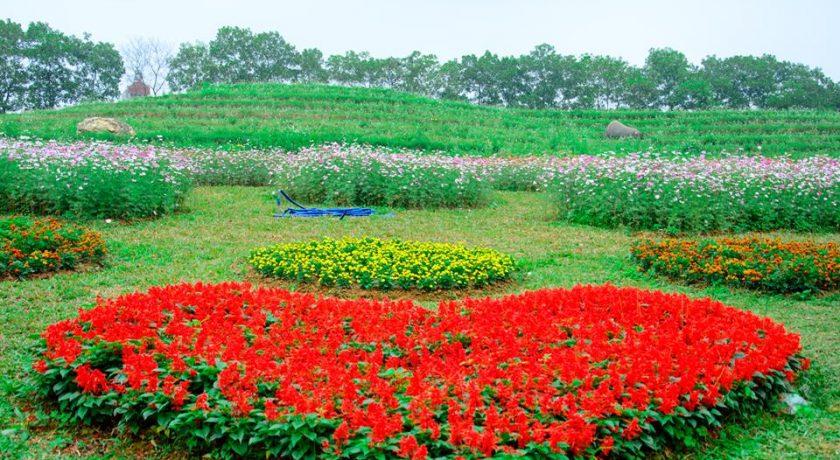 canh-quan-the-phoenix-garden (1)